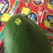 Pakistan Mango Fruit 5KG